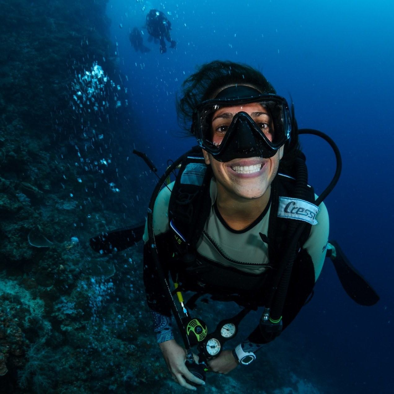 bohol philippines diving internships